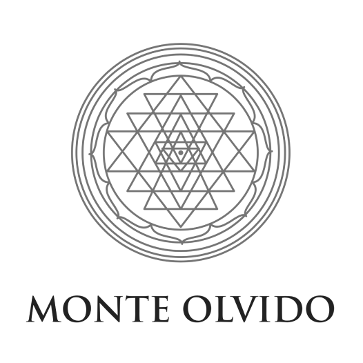 Monte Olvido project - Wine x Food