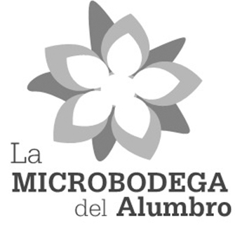Microbodega del Alumbro project - Wine x Food