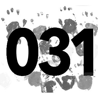 031 project - Wine x Food